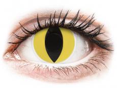 Kontaktní čočky Maxvue Vision - ColourVUE Crazy Lens - Cat Eye - nedioptrické (2čočky)