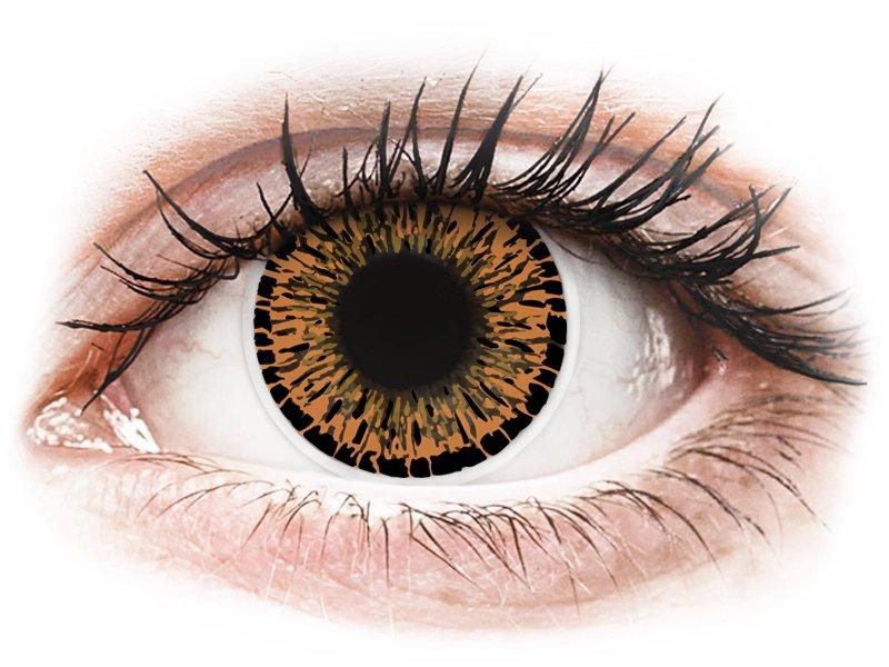 ColourVUE Elegance - nedioptrické (2 čočky) Brown
