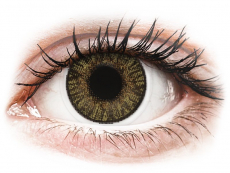 Barevné kontaktní čočky - nedioptrické - FreshLook ColorBlends Pure Hazel - nedioptrické (2čočky)