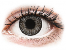 Barevné kontaktní čočky - nedioptrické - FreshLook ColorBlends Sterling Gray - nedioptrické (2čočky)