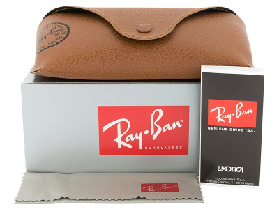 Ray-Ban Justin RB4165 - 865/T5 POL  - Preview pack (illustration photo)