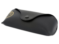 Ray-Ban Justin RB4165 - 601/8G  - Original leather case (illustration photo)