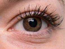 TopVue Color - dioptrické jednodenní (10 čoček) - Brown na šedém oku